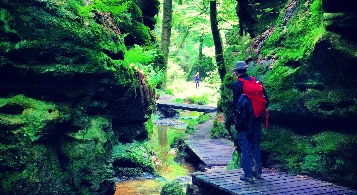 Voyage en pleine nature : quelle destination choisir ?