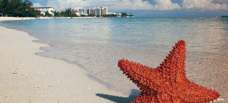 Les endroits les plus populaires lors d'un séjour de luxe aux Bahamas