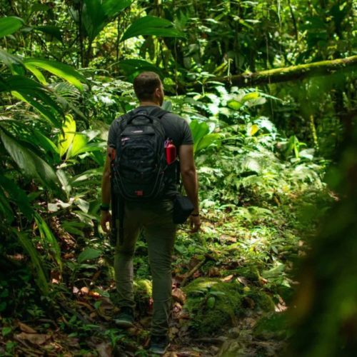 Qu'est-ce que l'écotourisme